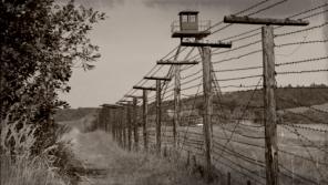 Přijetím zákona vznikla Pohraniční stráž, která vybudovala zátarasy připomínající oplocení koncentračních táborů.