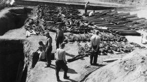 Zemřelí v Terezíně v posledních dnech války byli pohřbeni do hromadných hrobů u Malé pevnosti. Jejich ostatky byly exhubovány ve dnech 30. srpna až 4. září 1945 a uloženy na Národní hřbitov během pietního obřadu dne 16. září 1945. Foto: Karel Šanda