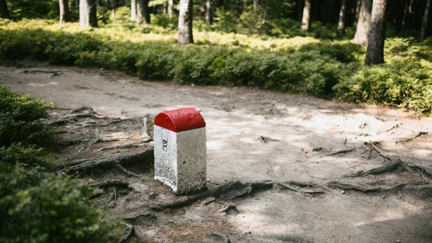 Hraniční kámen na Borůvkové hoře.