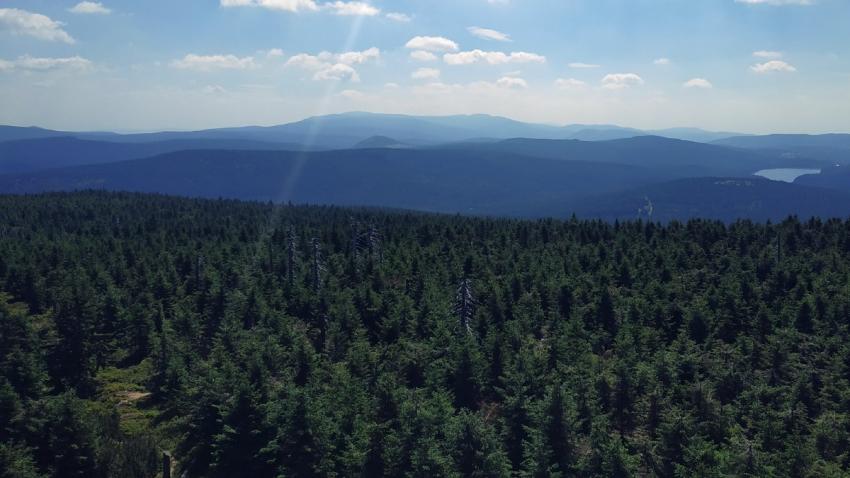 Skauti se rozhodli ukrýt tam, kde to dobře znali - v lesích pod Vlašským hřebenem v Jizerských horách.