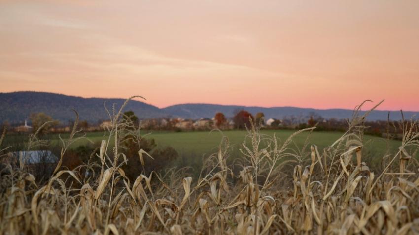 Vedle řádného zaměstnání na dráze obdělával 1,42 hektaru půdy, která zůstala v rodinném majetku. Ilustrační foto: Jake Gard