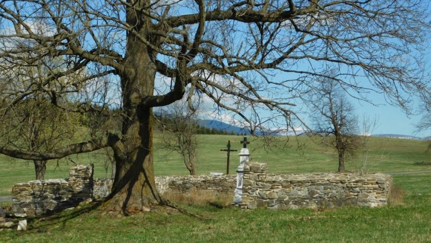 Místo hřbitova dnes. Foto: Vít Lucuk