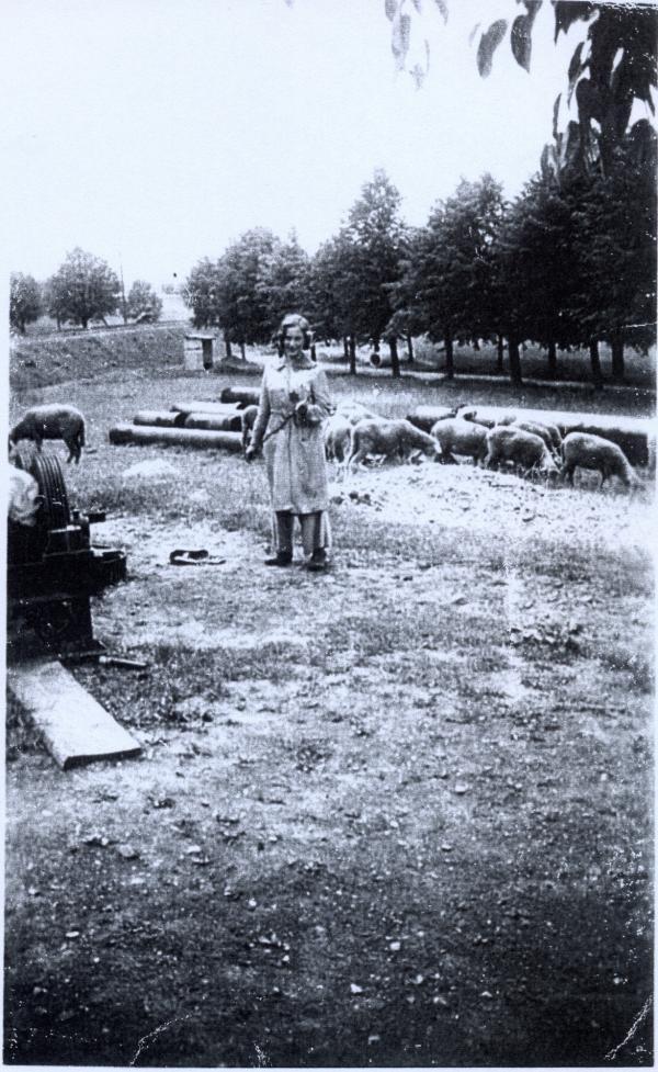Dívka s ovečkami, jak Doris zachytil Josef Toman v roce 1942.