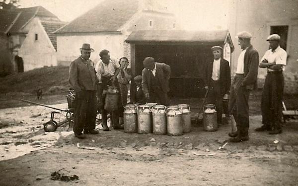 Sběr mléka soukromých hospodářů v Libovici. Foto Stanislav Bayer