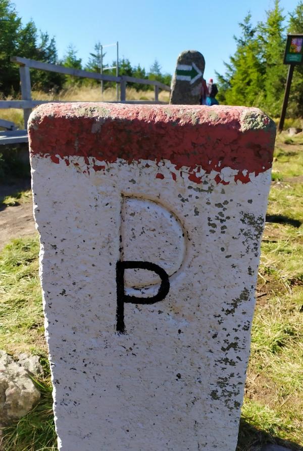Hraniční kámen s přepsaným D (Deutschland) na P (Polska) na dnešní česko-polské hranici v Jizerských horách prozrazuje, že do Postupimské konference se jednalo o hranici česko-německou. Foto: Post Bellum