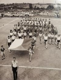 Veřejné cvičení 1951