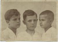 Bratři Jarmily - Jiří, Zdeněk, Vláďa Krbcovi