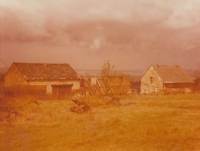 House in 1978