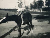 Pavel Dobrovolný, cca rok 1940