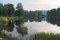 Rybník v zámeckém parku v Lipové