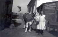 Dvě kravičky i drobná drůbež byly nedílnou součástí života početné rodiny…