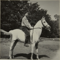 1953 holidays - brigade as a nurse at the horse breeding station in Nová Ves (Research Institute for the Travopol system in Pohořelice)