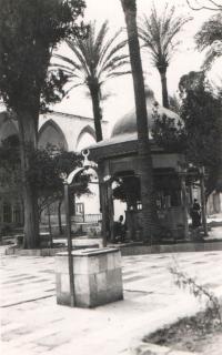 Část staré Alexandrie