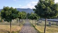 Hejnický hřbitov, kde byli pohřbeni Jiří Haba a Tomáš Hübner.