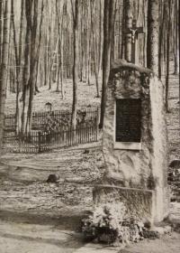 Fotografie pomníku ve Vápenicích