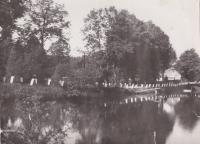 To the glassworks in Tasice around the Tasický pond