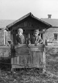 S bratrancem Josefem v Litohlavech před rozestavěným kravínem JZD v boudě, která zbyla po experimentu se studeným odchovem telat, 2. polovina 50. let