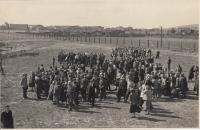 Učňové na zahradě internátu Rudého Letova 14. 9. 1953