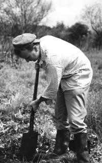 Při získávání půdních vzorků, Mokré louky (1978)