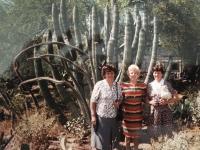 návšteva USA v roku 1995