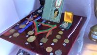 Medaile na Špilberku