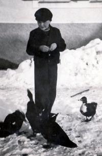 Karel Pexidr in Vícov; 1939
