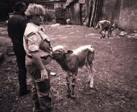 Z mise UNPROFOR v Bosně, 1995