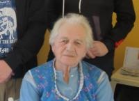 Anna Plesníková, 2020