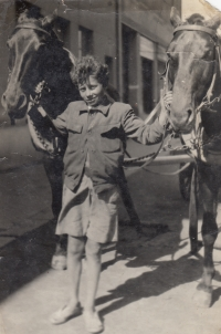 Miloslav Kopfstein with father´s horses (1943)