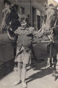 Miloslav Kopfstein with father´s horses (1943)