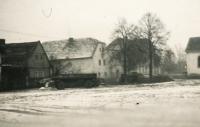 Šimonův statek ve Veselé, začátek 50. let 20. století
