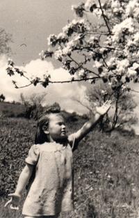Maria Hrochová, rok 1945