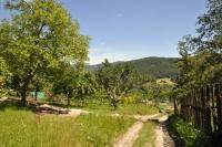 Cesta z osady Horná Stredná na Dolnú Strednú