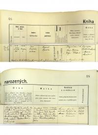 Zápis o narození v matrice; 1919