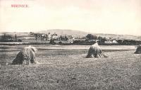 Pohled na Mirovice; 1921
