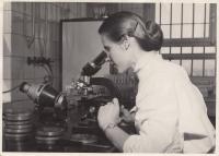 Věra Zikmundová při zkoumání laboratorních vzorků