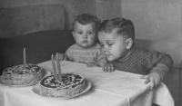 Oslava třetích narozenin Dalibora Matějů, vlevo sedí bratr Ivo, Kounice u Brna, 1951