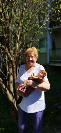 Marianna Pevná se svou dětskou panenkou, s níž v květnu 1945 stála na kraji silnice a kolem létaly kulky z útočícího sovětského letounu