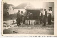 Povinné odvody mléka v Libovci. Foto Stanislav Bayer