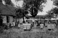 Vladimír Ficek a jeho včely v české obci Semiduby na Volyni v roce 1932