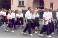Sokol - župní slet Klatovy, 2008
