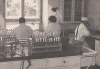 At work in the Veterinary Research Institute; 1959