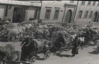 Prchající Němci  s Prostějova…květen 1945