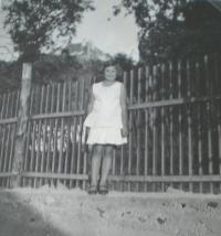 1936 Panenské Břežany