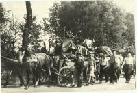 Na této fotografii při stěhování je Milada v popředí, jako první jde Antonín Zápotocký (zdroj: osobní archiv p. Cábové)