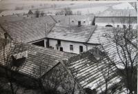 Rodiné hospodářství v Petrůvkách za první republiky