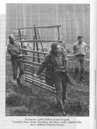 Taraxacum na lesní brigádě