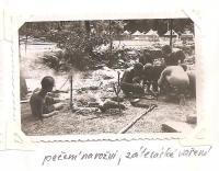 Oblastní lesní škola Jiráskovy oblasti - srpen 1946 - pečení na rožni, zálesácké vaření