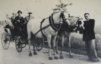 Koňské spřežení rodiny Jančí - vpředu pamětník, na kozlíku jeho otec Alois