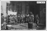 Jičínská vlčata na Jamboree slovanských skautů v roce 1931: výdej stravy-snad oběd (soukromý archiv Jana Vally)